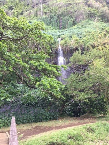 Anse Des Cascades 1